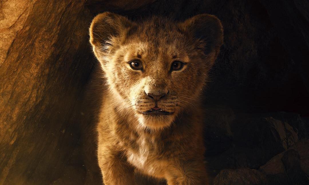 《狮子王》重制版先导预告片震撼发布