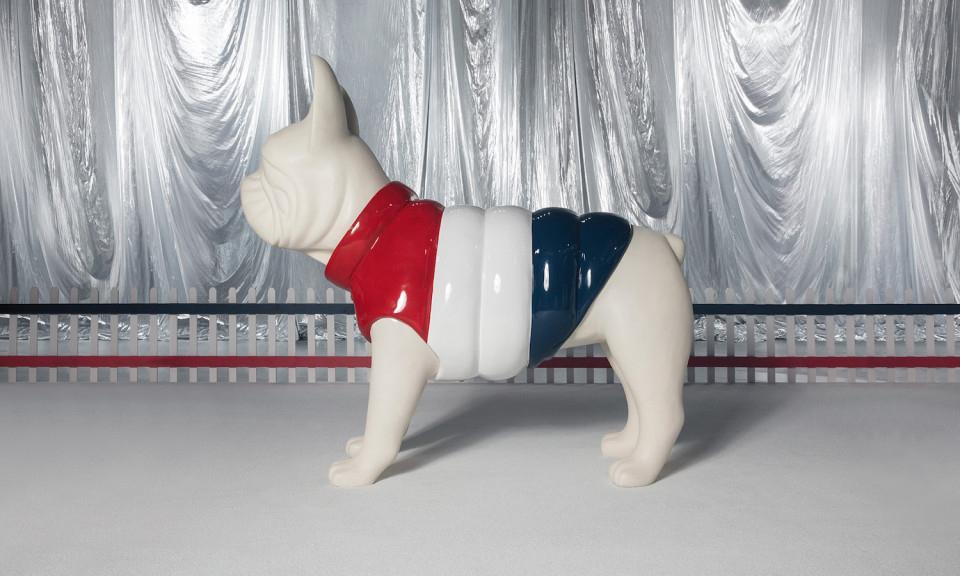 人不如狗系列,Moncler 为小狗推出羽绒服
