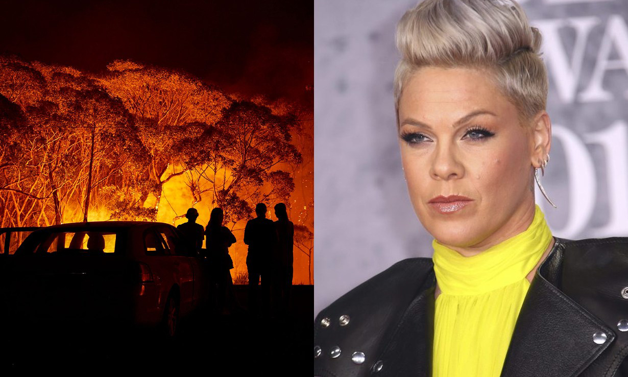澳洲山火伤亡加剧,歌手 Pink 募捐 50 万美元予以消防救援