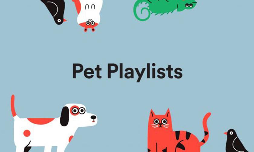 让宠物与你一同享受音乐,Spotify 新增宠物专属功能