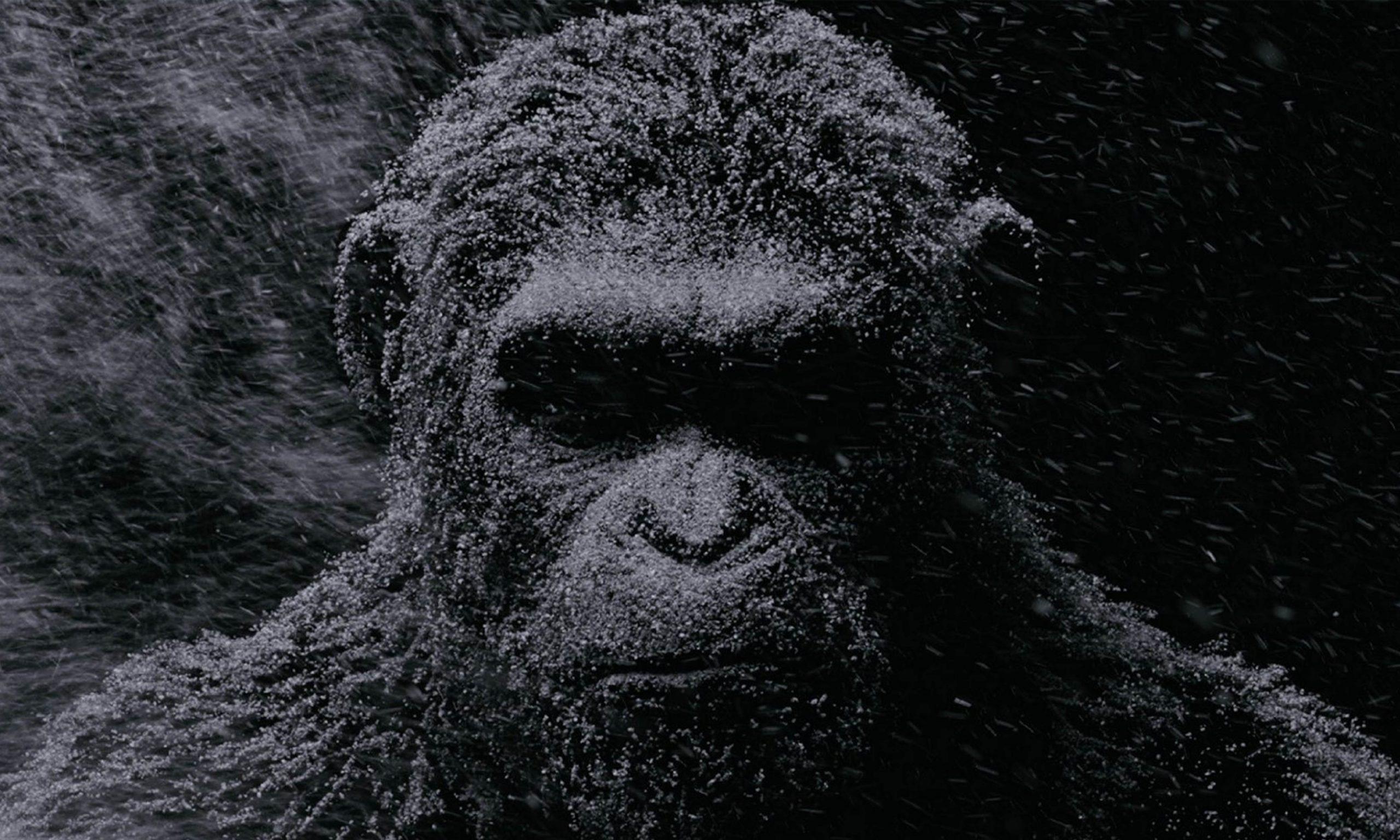 新版《猩球崛起》即将开拍