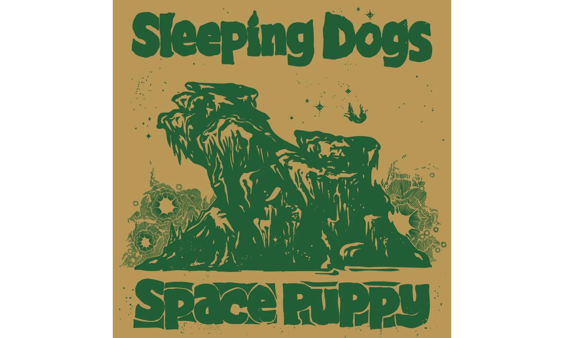 北京器乐演奏团体 Sleeping Dogs 首张 EP《Space Puppy》今日发行