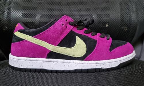 Nike SB Dunk Low「ACG Terra」全新配色释出
